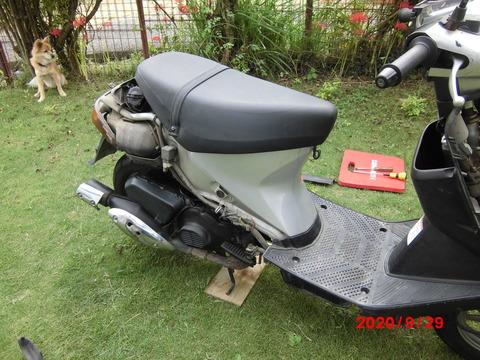 CIMG2694