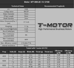 mt1306-10-03