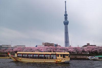 20160402DSCN4274隅田川桜スカイツリー屋形船SM