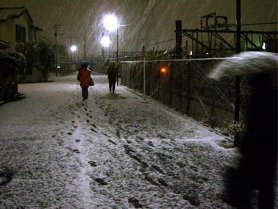 20110214雪DSCN2209SM