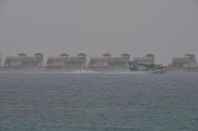 20100405DSC_3007雨の着水SM