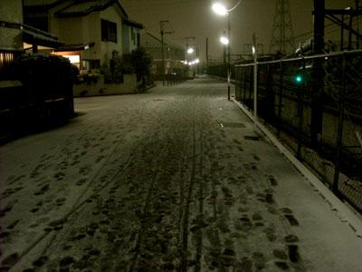 20100309DSCN0806雪SM
