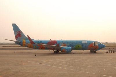 20141016DSCN1128深セン航空特別塗装B737-800SM