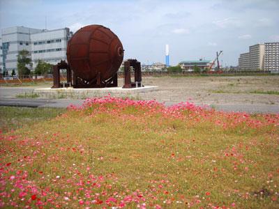 20100510DSCN1265金町鉄球SM