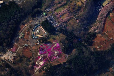 20110417DSC_8645羊山公園SM