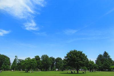 20190526IMG_0104公園SM