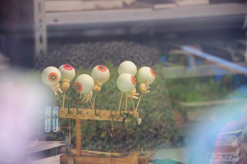 20131221DSC_0642目玉SM