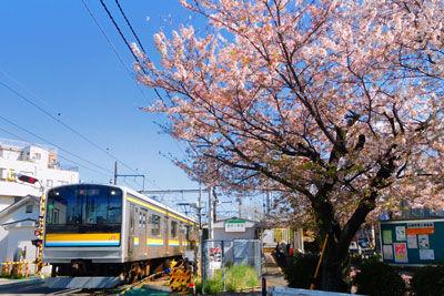 20190409DSCN0725鶴見線桜SM