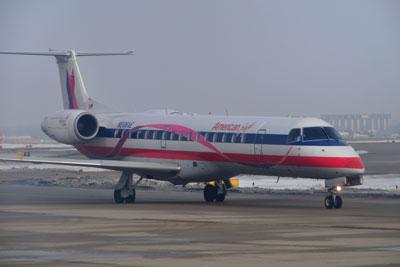ERJ-145LRピンクリボン塗装_8