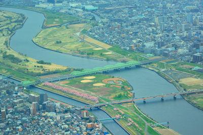 20150404DSC_2881川口荒川桜SM