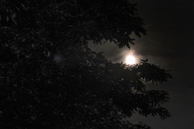 20200604IMG_1817夜の月SM