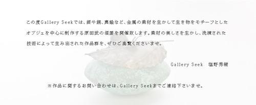原田武DM③