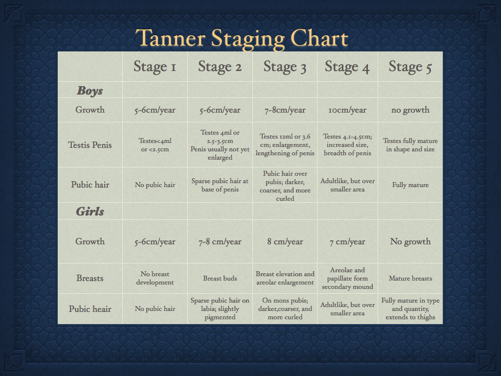 Tanner Staging Chart Tanner 分類 成長期のステージ分類 : スポーツ整形外科医S. Uの ...: http://blog.livedoor.jp/soshi_sports/archives/1160624.html