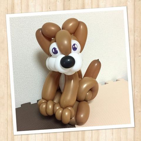 動物-芝犬-1