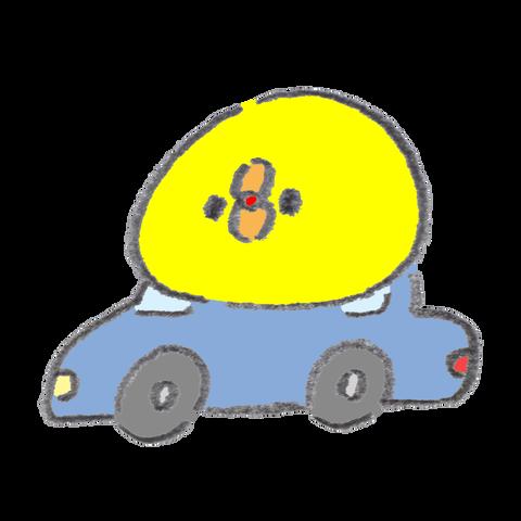 on-the-car (1)