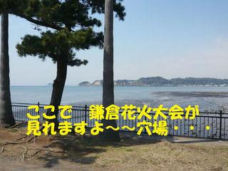 e73494df.jpg