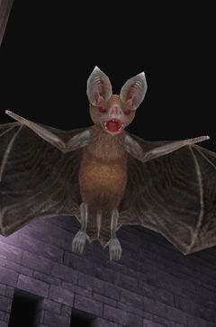 monster0_bat01