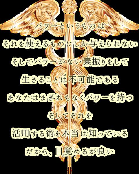 ZPnXhuj71vH4M1N1563823114_1563823328