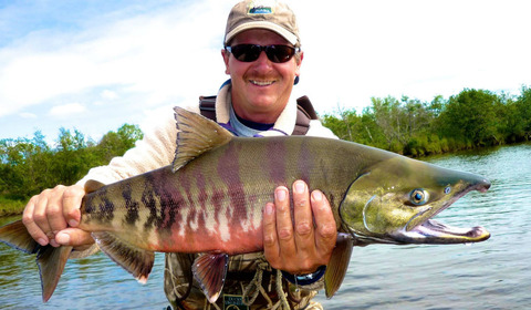 chum-salmon-blog-headline