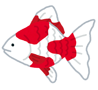 fish_kingyo2