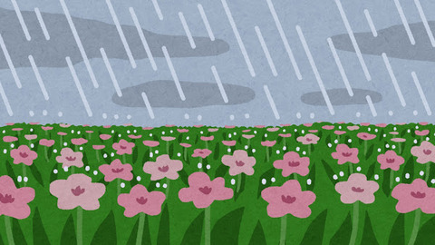 bg_rain_natural_flower