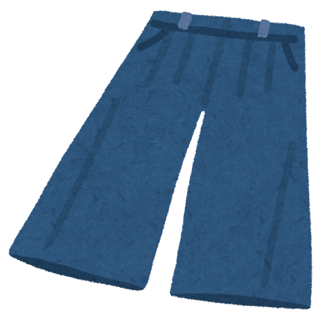 fashion_gaucho pants