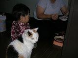 猫のご飯を狙う颯太・・