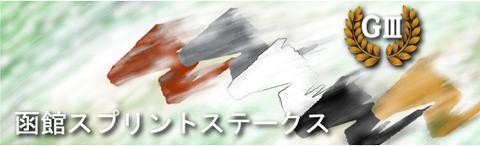 函館SS のコピー