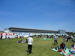 競馬RUN in JRA中山競馬場1