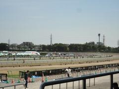競馬RUN in JRA中山競馬場3