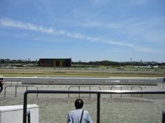 競馬RUN in JRA中山競馬場2