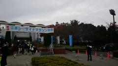 江東シーサイドマラソン会場②