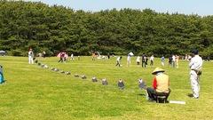 稲毛海浜公園の連凧1