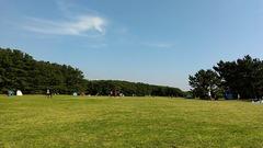 稲毛海浜公園の芝生広場