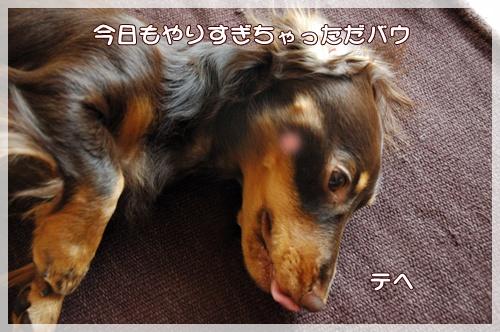 souther_20090929e