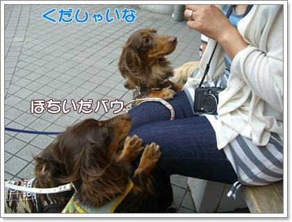souther_20090531e