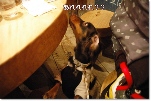 souther_20091128g