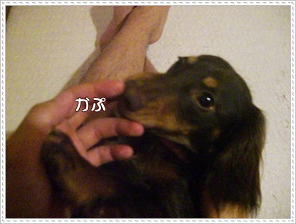 souther_20090418g