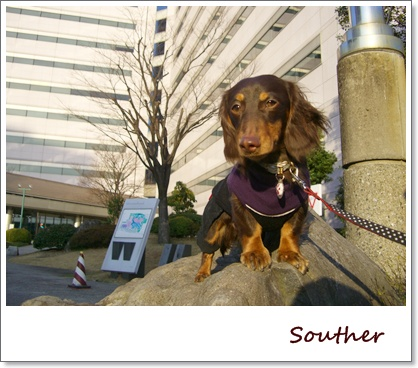 souther_20090225a