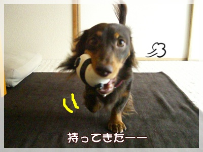 souther_20090828g