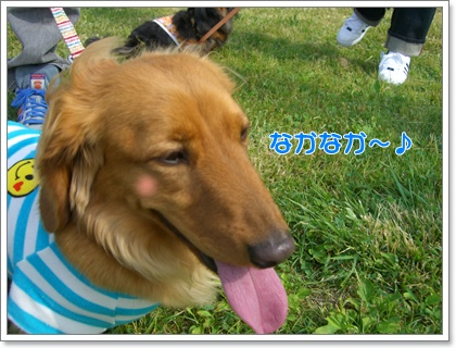 souther_20090530g
