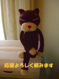 souther_20081229g