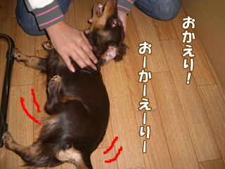 souther_20081206g