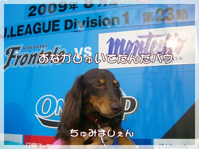 souther_20090826j