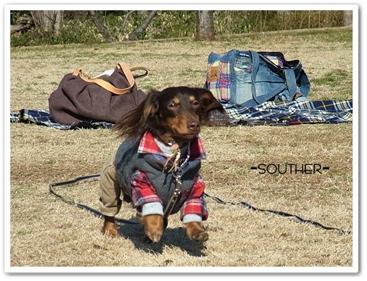 souther_20120221i