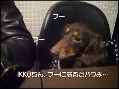 souther_20090324k