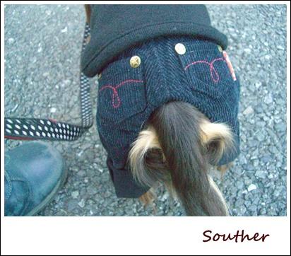 souther_20090225j