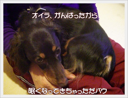 souther_20090326g