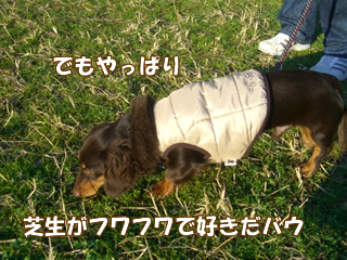 souther_20081202g