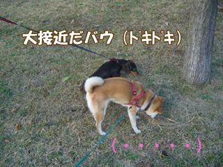 souther_20081103e